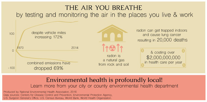 NEHA: The Air You Breathe Inforgraphic